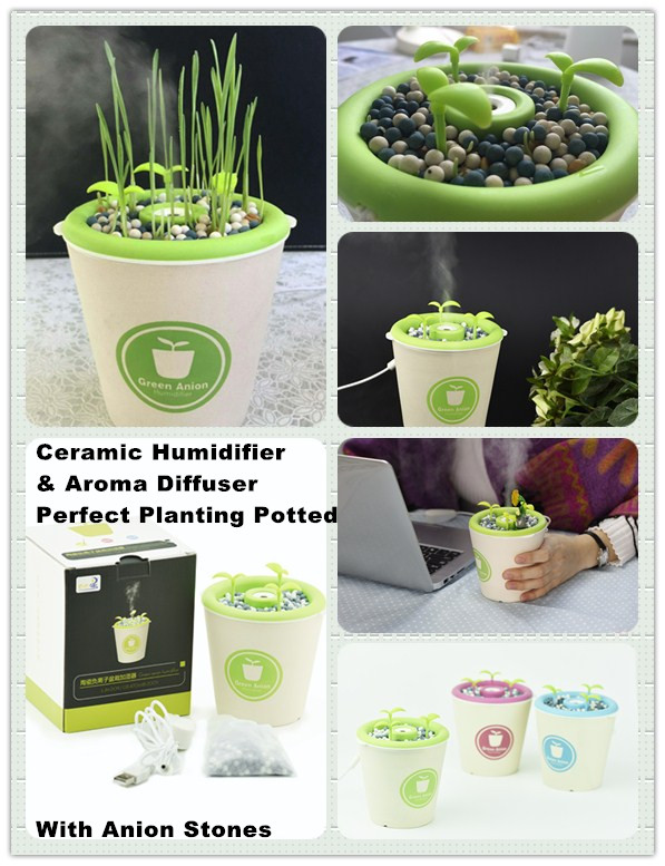Ceramic Humidifier& Aroma Diffuser &Planting Potted