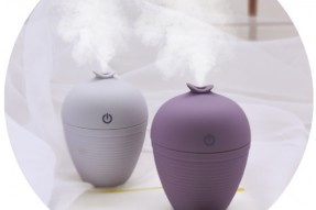 Wish bottle humidifier