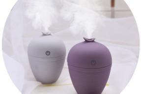 Wish bottle humidifier
