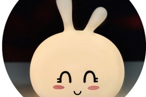 Cute Bunny Silicone  Light (rechargeable)