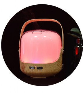 Portableultrasonic aroma oil diffuser LJH-020