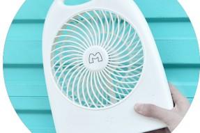 Portable strong wind fan