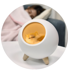 Bedside Round Dim Little Pet House Atmosphere Light
