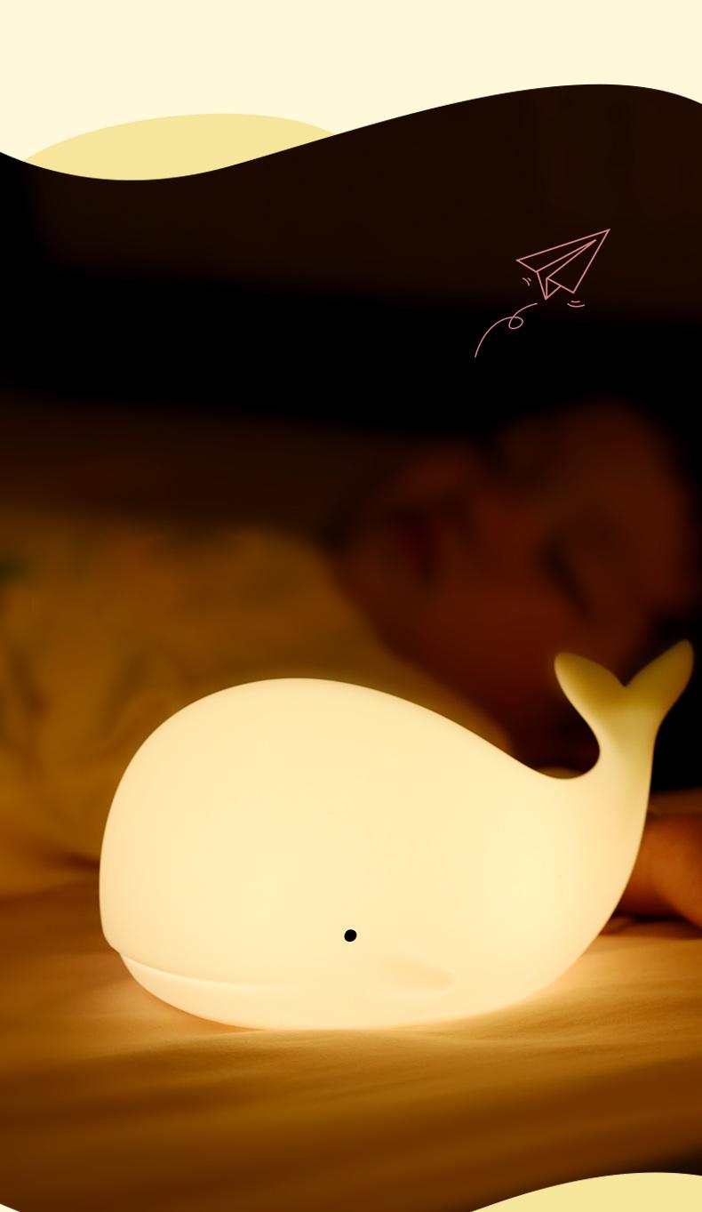 海豚_09